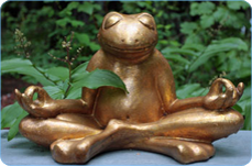 Image of meditation frog